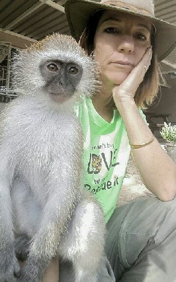 You See How Baby Monkey Makes Friends with Every Animal He ...
