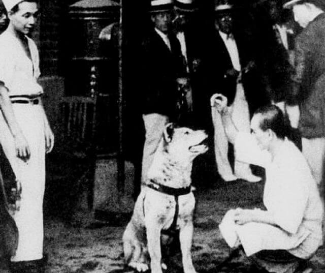 Hachiko with owner