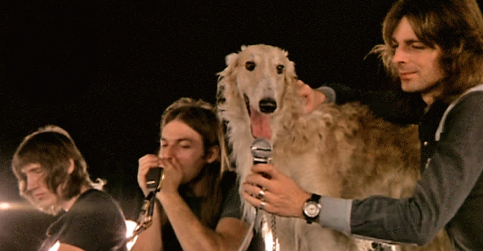 Pink Floyd dog song