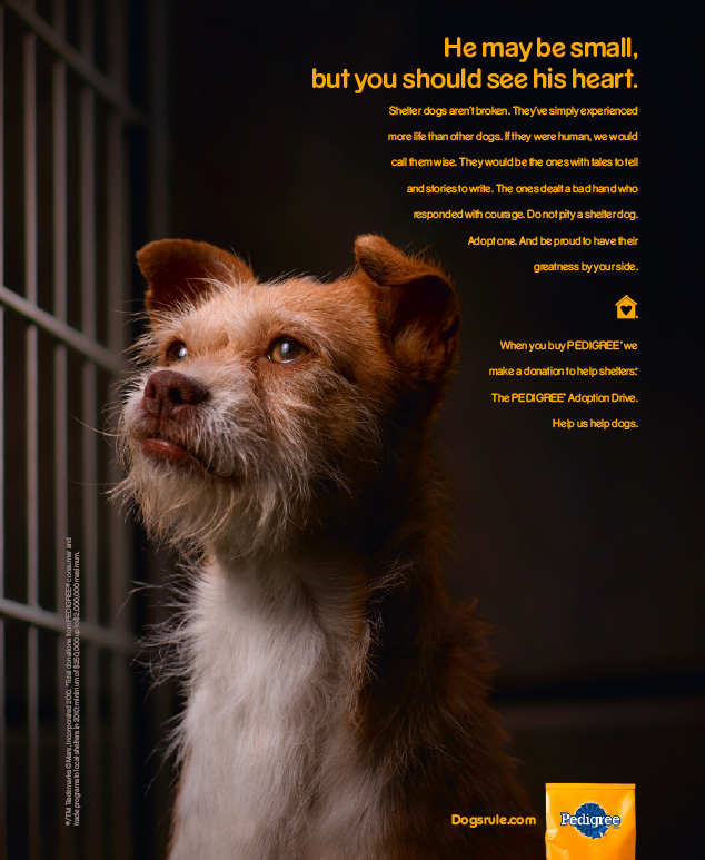 Best Print Ads Featuring Dogs