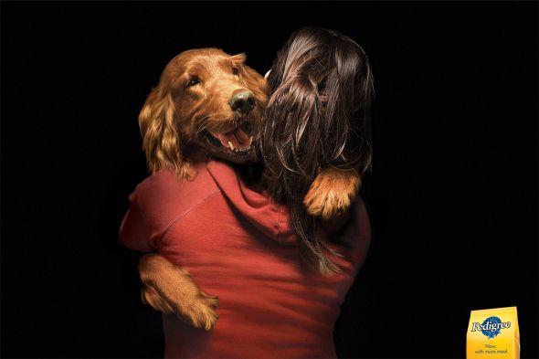 Pedigree love dogs ad