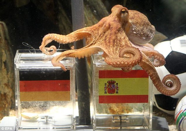 Octopus who predicted FIFA world cup results