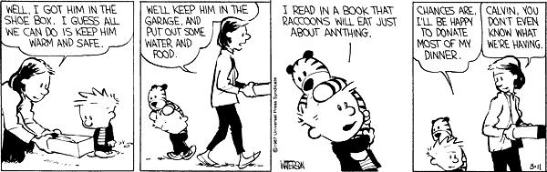 calvin and hobbes best