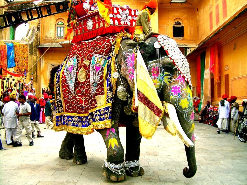Decorated elephant, colourful elephant, Elephant India's national heritage animal