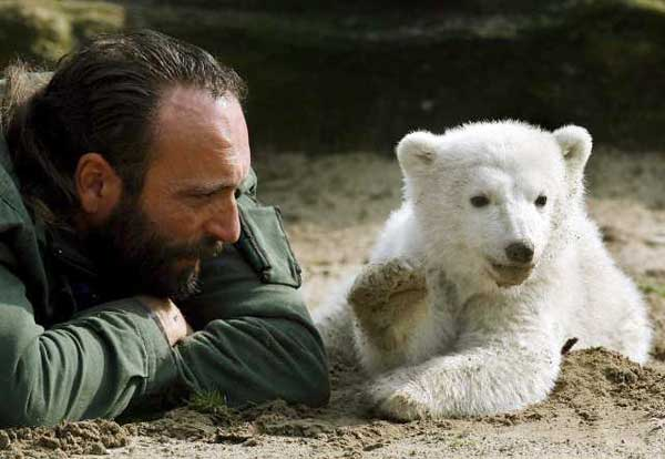 A 3-month-old Knut lays next to keeper Doerflein during the cubs first public appearance at the Berlin Zoo. (Wolfgang Kumm / European Pressphoto Agency)