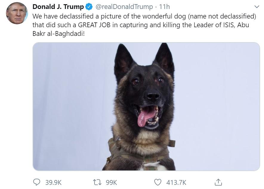 Dog who captured ISIS leader