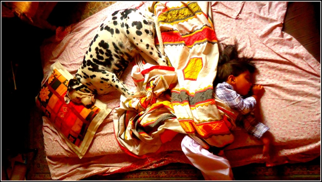 Boy sleeping with his best friend, infant with dog, surreal as a dream