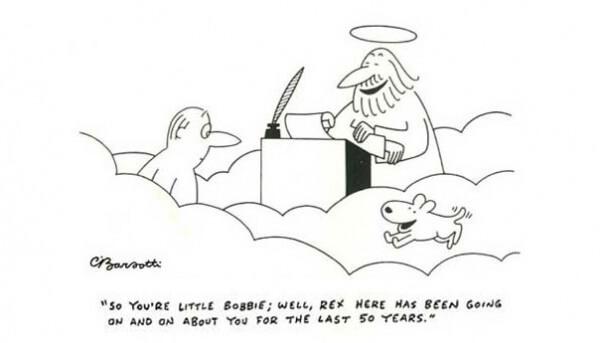 dog heaven cartoon