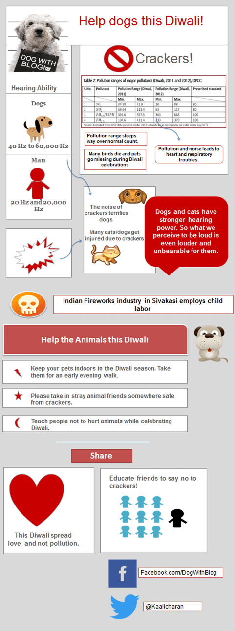 Dog Diwali - 10 tips to help stray dogs diwali , How to help dogs this Diwali