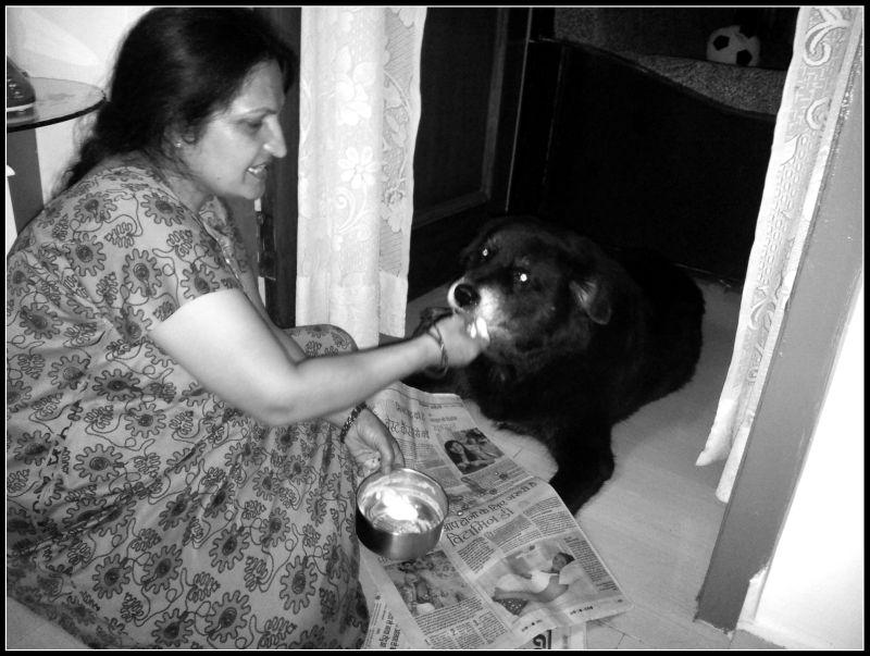 ghar ka khaana, food made by mother. The taste of memory