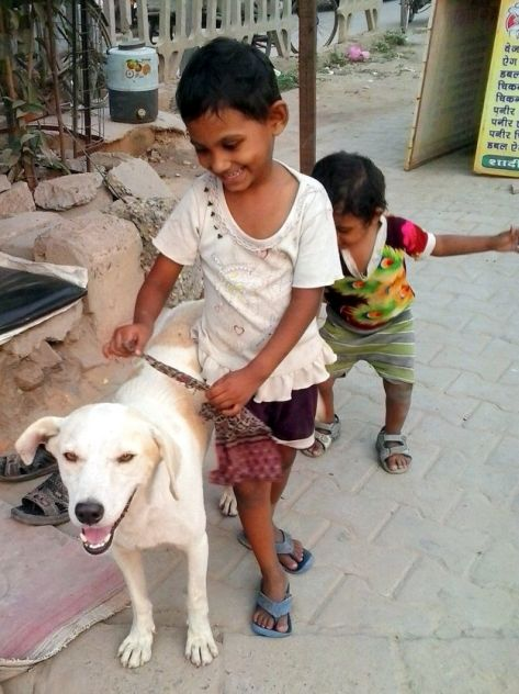 All it takes is love - Dog with Blog