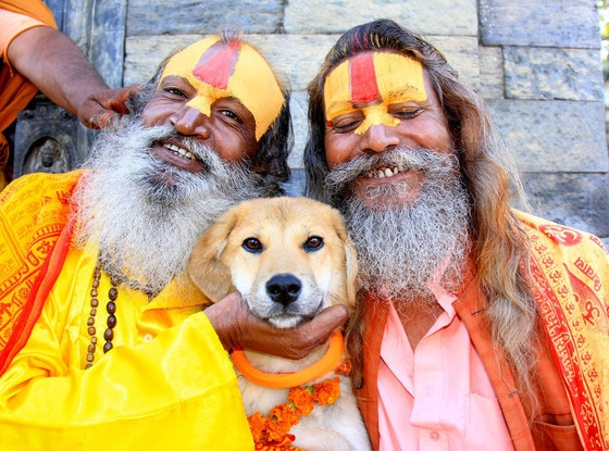 rupee 2 - Oscar World Woof Tour, Indian saints with dog