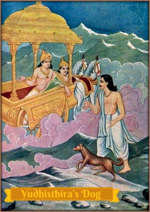Story of Yudhisthira's dog Mahabharat - Pandava dog story