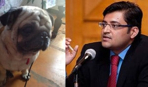 Dog's interview with Arnab Goswami
