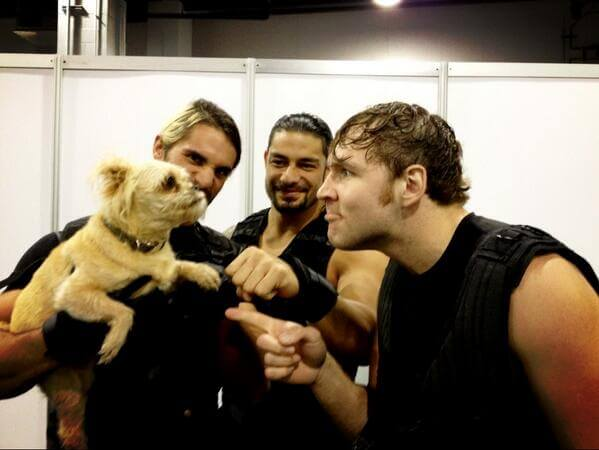wrestlers who love dogs Seth Rollins