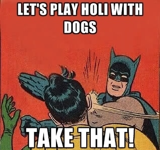 batman - holi