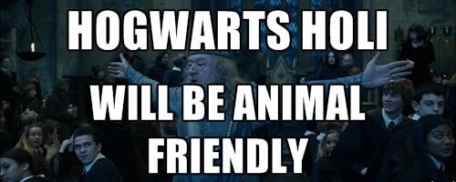 Hogwarts Holi