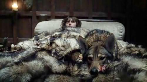 Summer saves Bran - game of thrones