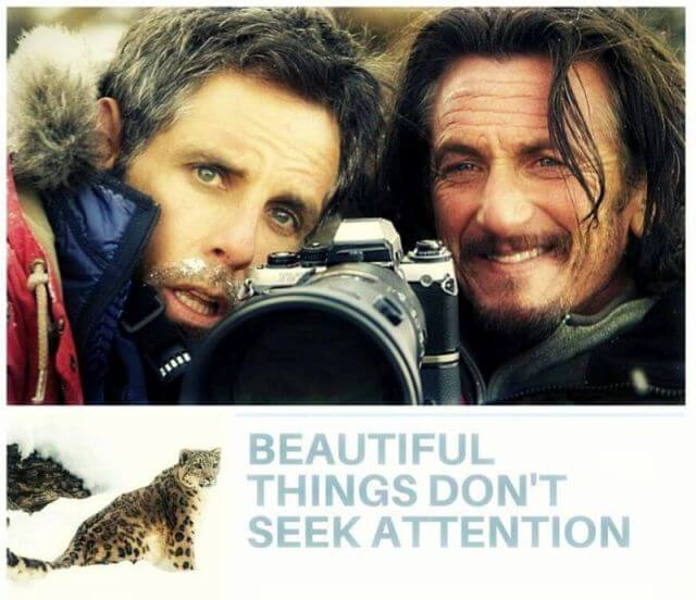 Walter Mitty Beautiful things don't seek attention