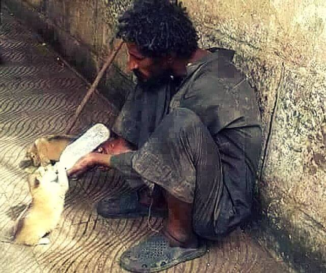 homeless man feeds animals