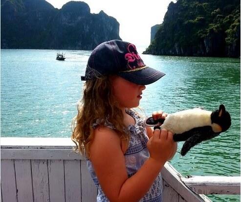 pingvar penguin travels world