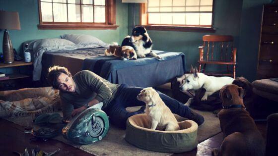 will graham dog lover Hannibal