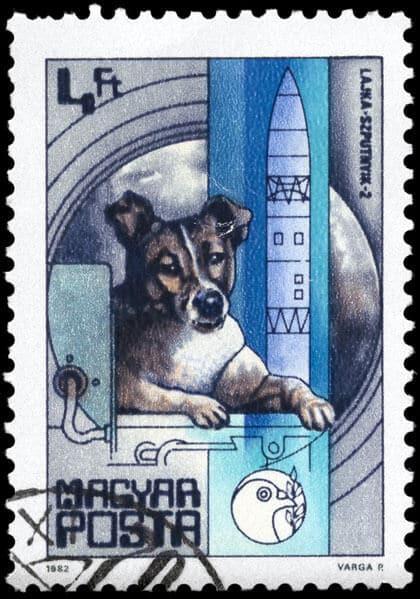 Laika postage stamp