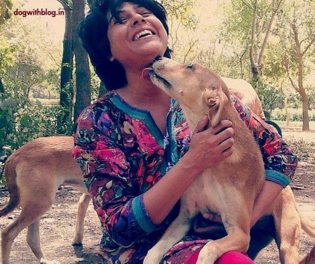 Happy Friendship Day Dog Lovers