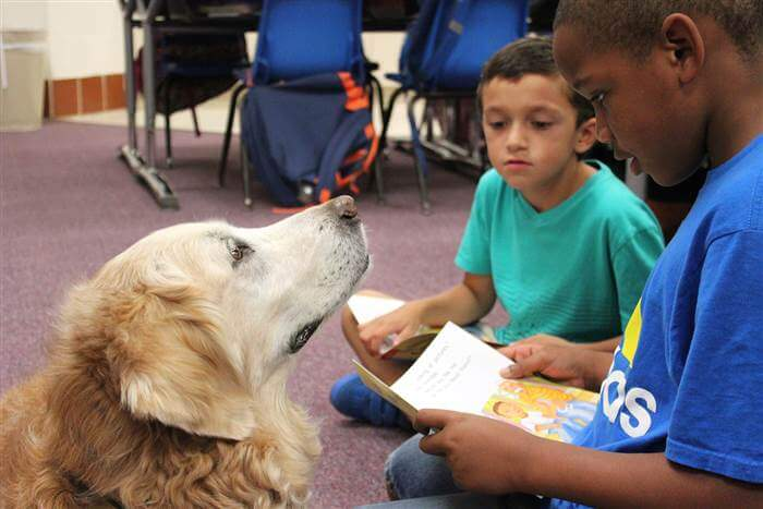 9/11 dog helps special kids