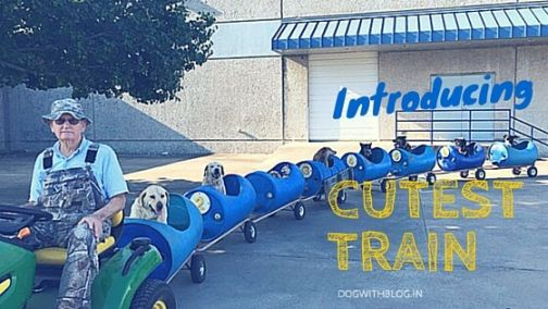 most awesome train