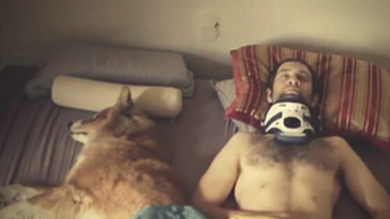 Meru documentary dog Renan Ozturk