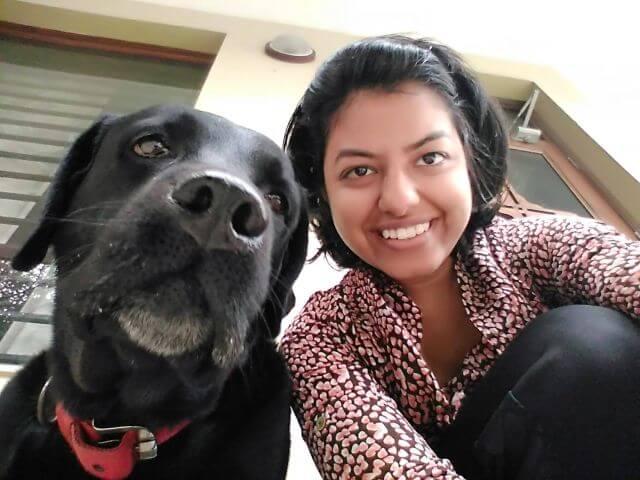 India dog blog