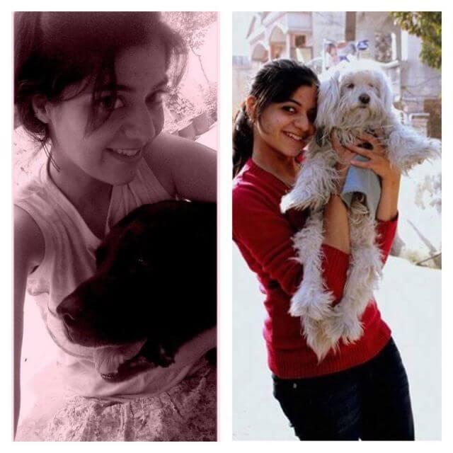 Himachal dog lover