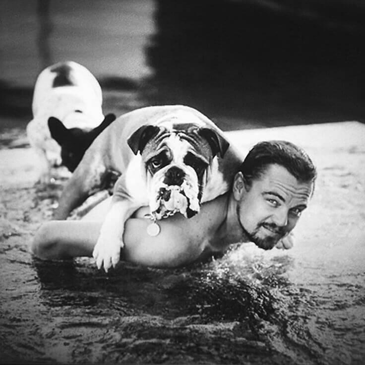 leonardo dicaprio dog lover