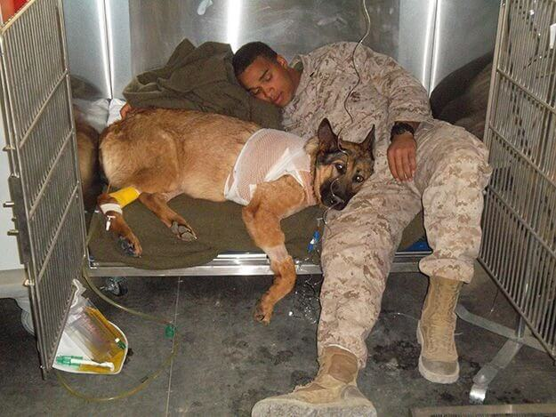 Cpl_Rodriguez_with_Lucca_recovering