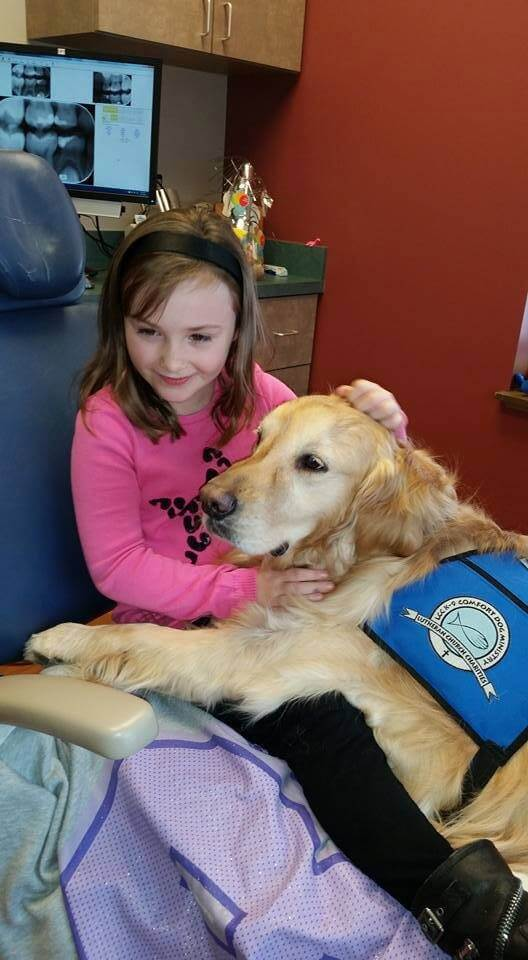 dog helping dentist