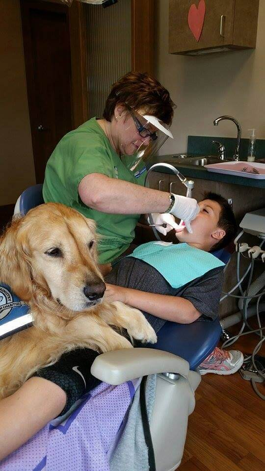dog helping patients