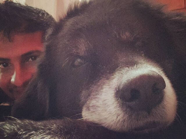 Kaalu dog with blog