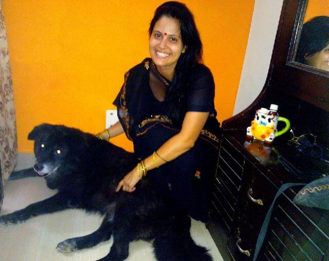 Himalayan mastiff dog and vet