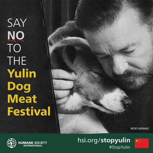 Ricky Gervais Yulin