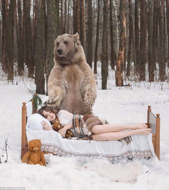 Russia bear model anti hunting