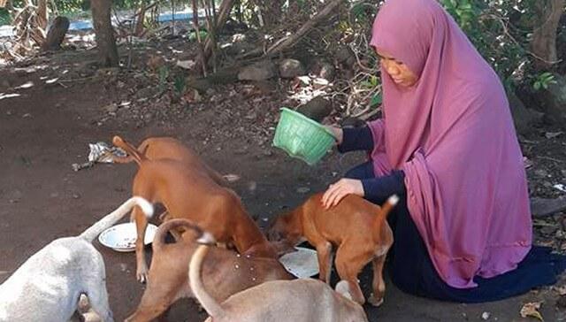 muslim woman dog lover