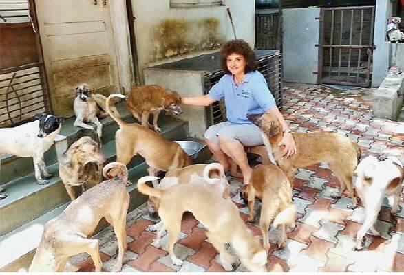 Pune dog lover