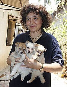 pune dog adoption