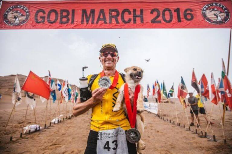 Gobi desert marathon dog