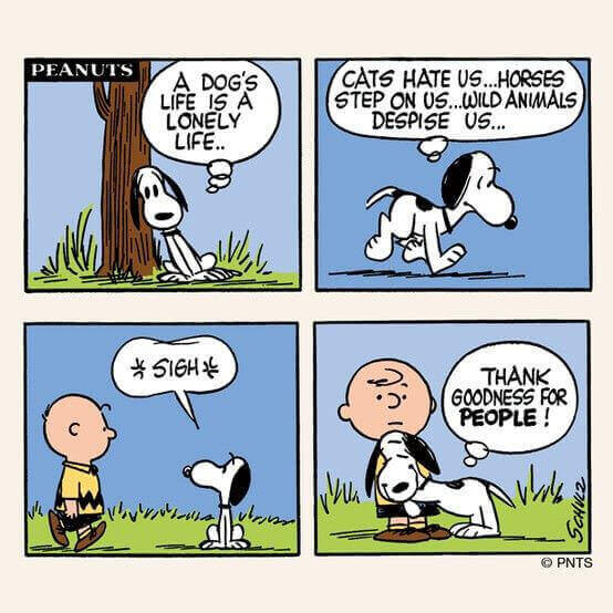 Charlie Brown Dog Walking