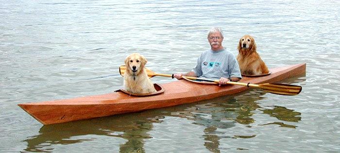 kayak dogs