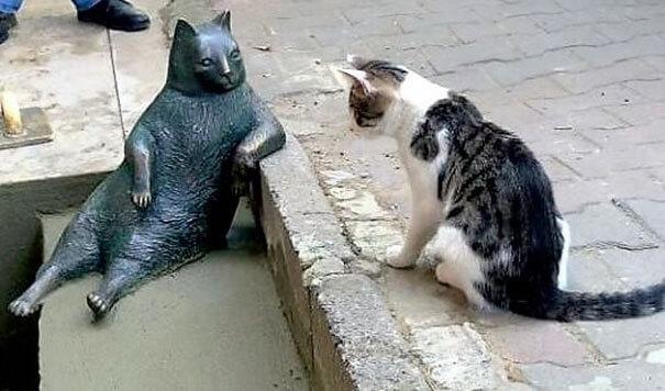 cat statue Turkey