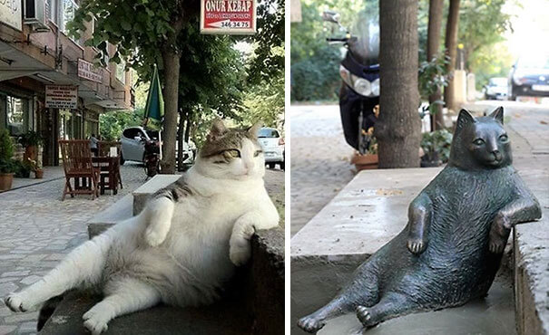 Cat honored with her own statue