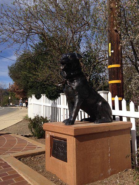 bosco dog statue